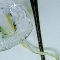 Floral Art Glass, furnace blown originals -detail