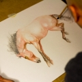 Horse-watercolor-OwnerLess-Beast-artist-painting-process