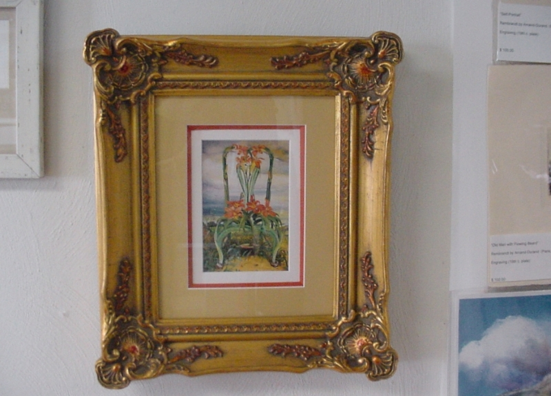 Custom finished frame with deep bevel accent mat, print by Timothy Martin