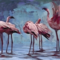 Flamingos Gather - Katherine Fraser