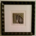 Etching-Zebra_custom-framed